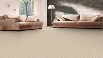 Carpet Cleaning St James